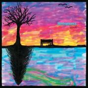 Stereophonics: Kind - Plak
