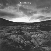 David Darling: Dark Wood - CD