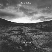 David Darling: Dark Wood - CD