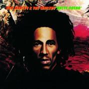 Bob Marley & The Wailers: Natty Dread - Plak