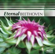 Çeşitli Sanatçılar: Beethoven (Eternal) - CD