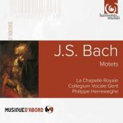 La Chapelle Royale, Collegium Vocale Gent, Philippe Herreweghe: J.S. Bach: Motets BWV 225-230 - CD