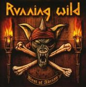 Running Wild: The Best Of Adrian - CD