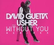 David Guetta, Usher: Without You - Single