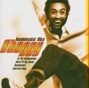 Shaggy: Boombastic Hits - CD