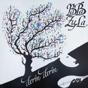 Baba Zula: Derin Derin - Plak