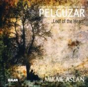 Mikail Aslan: Pelguzar - CD