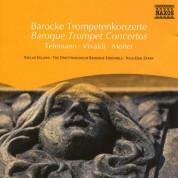 Çeşitli Sanatçılar: Baroque Trumpet Concertos - CD