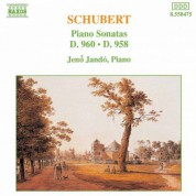 Schubert: Piano Sonatas Nos. 21, D. 960 and 19, D. 958 - CD