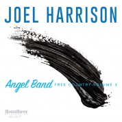 Joel Harrison: Angel Band: Free Country Vol. 3 - CD