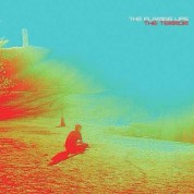 Flaming Lips: The Terror - CD