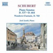 Schubert: Piano Sonatas, D. 537 and 664 / 'Wanderer Fantasy' - CD