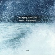 Wolfgang Muthspiel: Where The River Goes - Plak