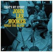 John Lee Hooker: How long blues - Plak