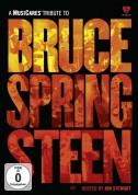 Bruce Springsteen, Çeşitli Sanatçılar: A MusiCares Tribute To Bruce Springsteen - DVD