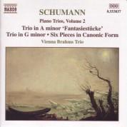 Vienna Brahms Trio: Schumann, R.: Piano Trios, Vol.  2 - CD
