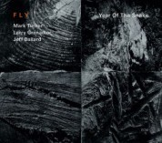 Fly Trio: Year of the Snake - CD