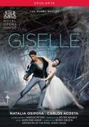 Adam: Giselle - DVD