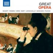 Çeşitli Sanatçılar: Great Opera - CD