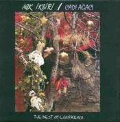 İlhan İrem: 2 / Aşk İksiri-Cadı Ağacı - CD
