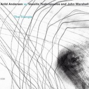 Arild Andersen, Vassilis Tsabropoulos, John Marshall: The Triangle - CD