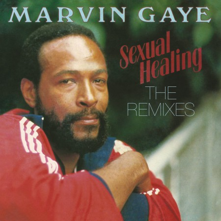 Marvin Gaye: Sexual Healing: The Remixes - Plak