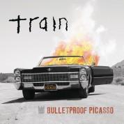 Bulletproof Picasso - Plak