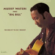 Muddy Waters Sings Big Bill Broonzy - Plak