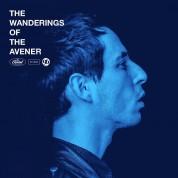 The Avener: The Wanderings Of The Avener - Plak