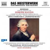 Helmut Muller-Bruhl: Hommage zum 200. Todestag von Joseph Haydn - CD