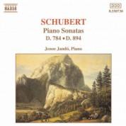 Schubert: Piano Sonatas, D. 784 and D. 894 - CD