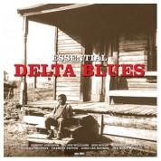 Çeşitli Sanatçılar: Essential Delta Blues - Plak