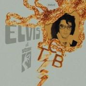 Elvis Presley: Elvis At Stax - CD