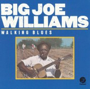 Big Joe Williams: Walking Blues - CD